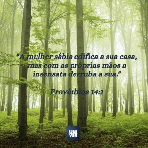 versículos sobre a mulher virtuosa 2