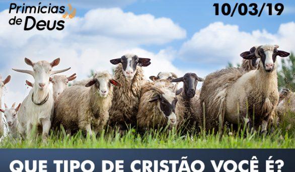 Bode ou ovelha: Que tipo de cristão você é?