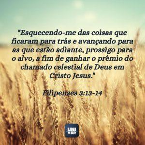 versículos sobre recomeço 4