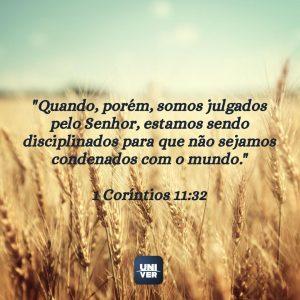 Versículo sobre disciplina 4