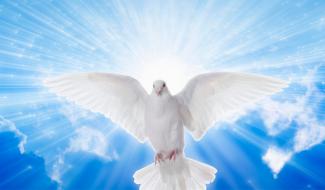 Por qual motivo não consigo receber o Espírito Santo?