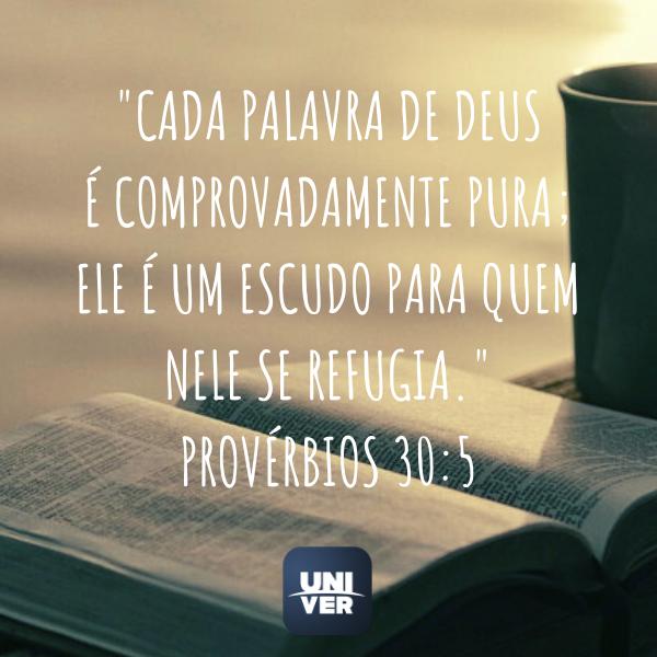 Versículos - Provérbios 30:5 - Univer Vídeo