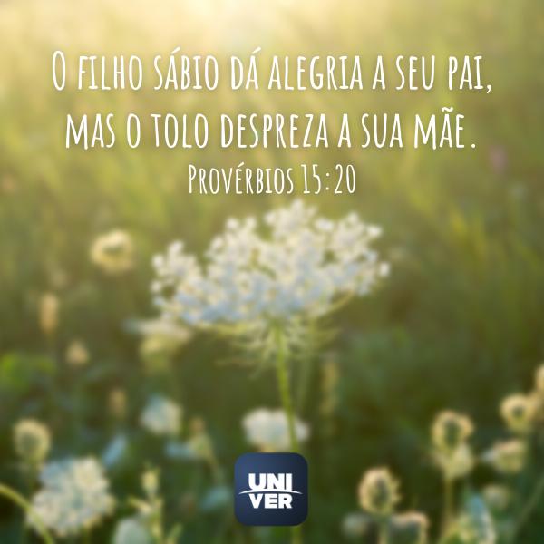 Provérbios 15:20 - Univer Vídeo
